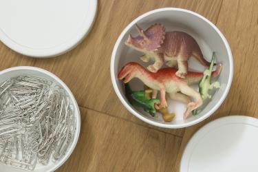 round_lunch_box_dinosaur